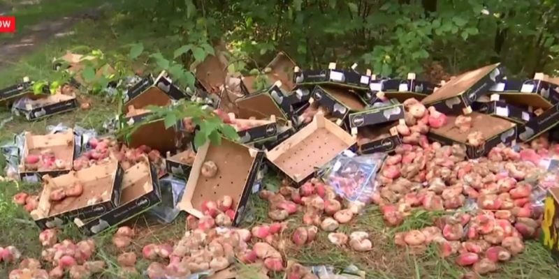 У Києві стихійні торгаші викинули ящики з зіпсованими фруктами серед дерев у парку