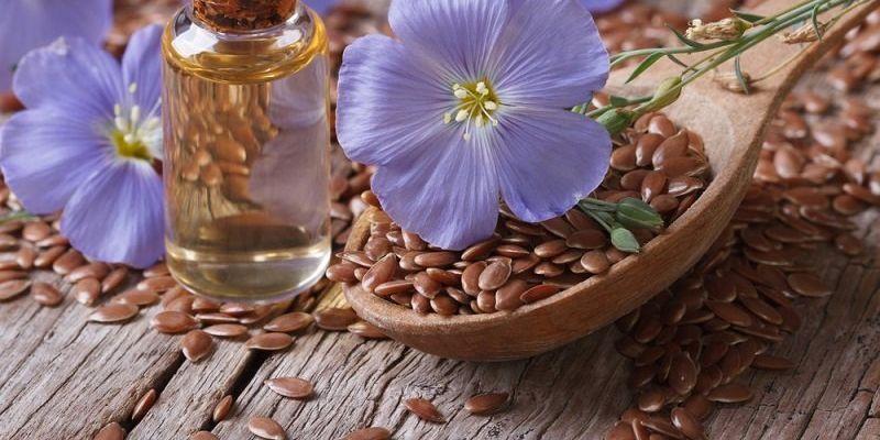 Семена льна и его полезные свойства: что нужно знать и как правильно употреблять?