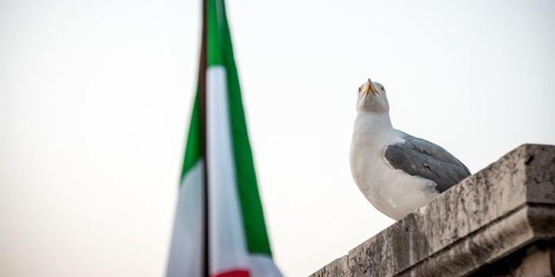 Названы сроки восстановления экономики Италии