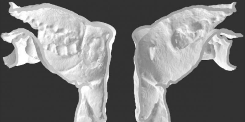 3000-річна мумія заговорила: вчені відворили голос єгипетського жерця Несьямуна – відео