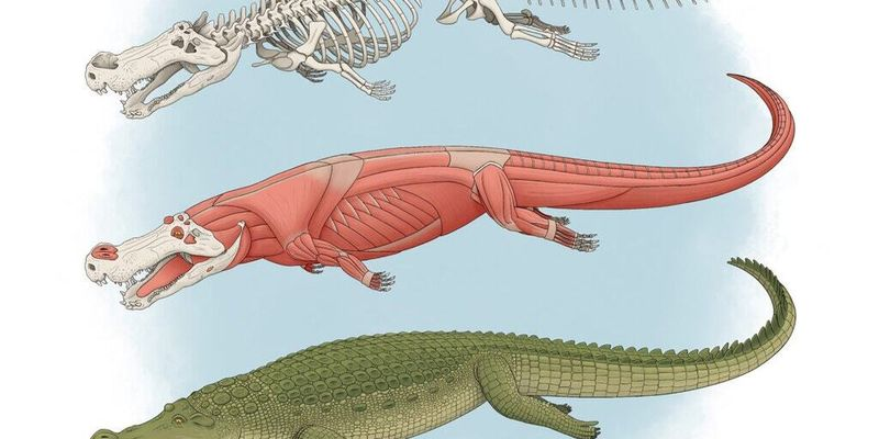 Науковці встановили, що стародавні крокодили полювали на динозаврів