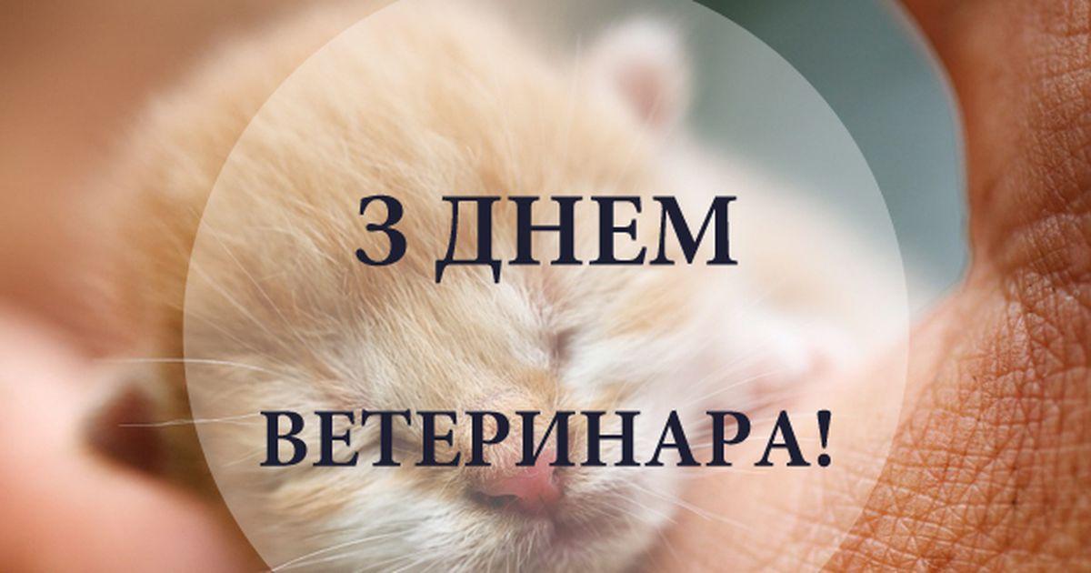 День ветеринара – поздоровлення, картинки, привітання зі святом
