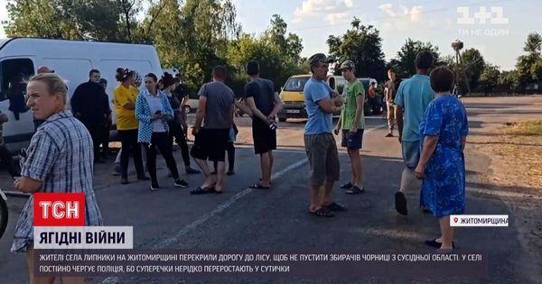 Війна за чорну ягоду: на Житомирщині селяни ополчилися проти збирачів із сусідньої області - Фото 1