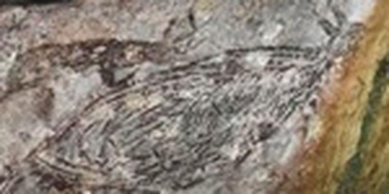 В Австралии обнаружили уникальный наскальный рисунок