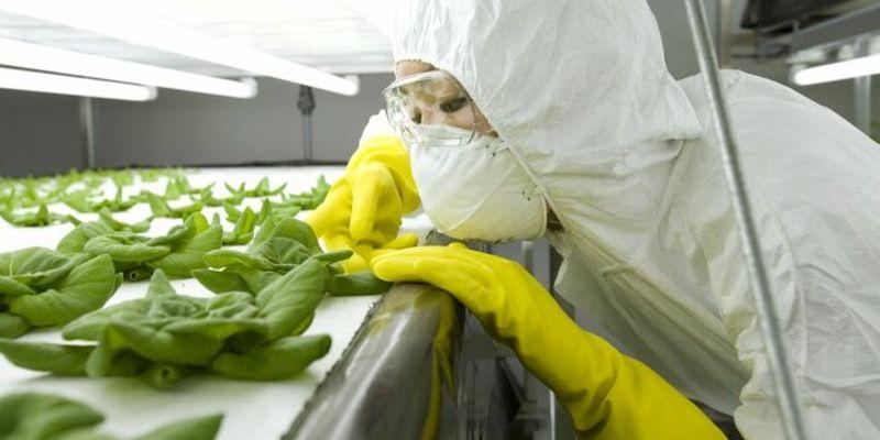 Стоматолог розповів про продукти, які викликають рак і безпліддя: ми їмо їх кожен день