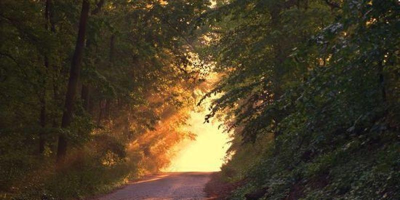 19 жовтня: цікаві звичаї, обряди та народний прогностик