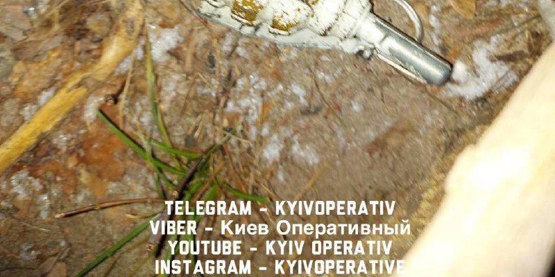 В Киеве поймали вора с гранатой и шприцами: фото