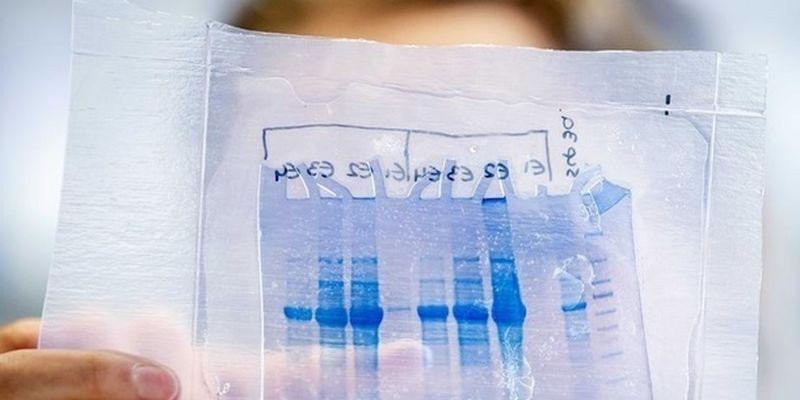 Во Франции начнут производить COVID-вакцины