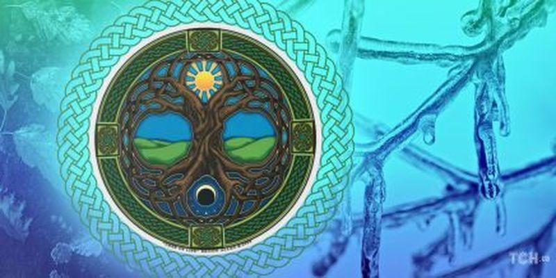 Кельтський календар дерев-2021: що приховують рослини