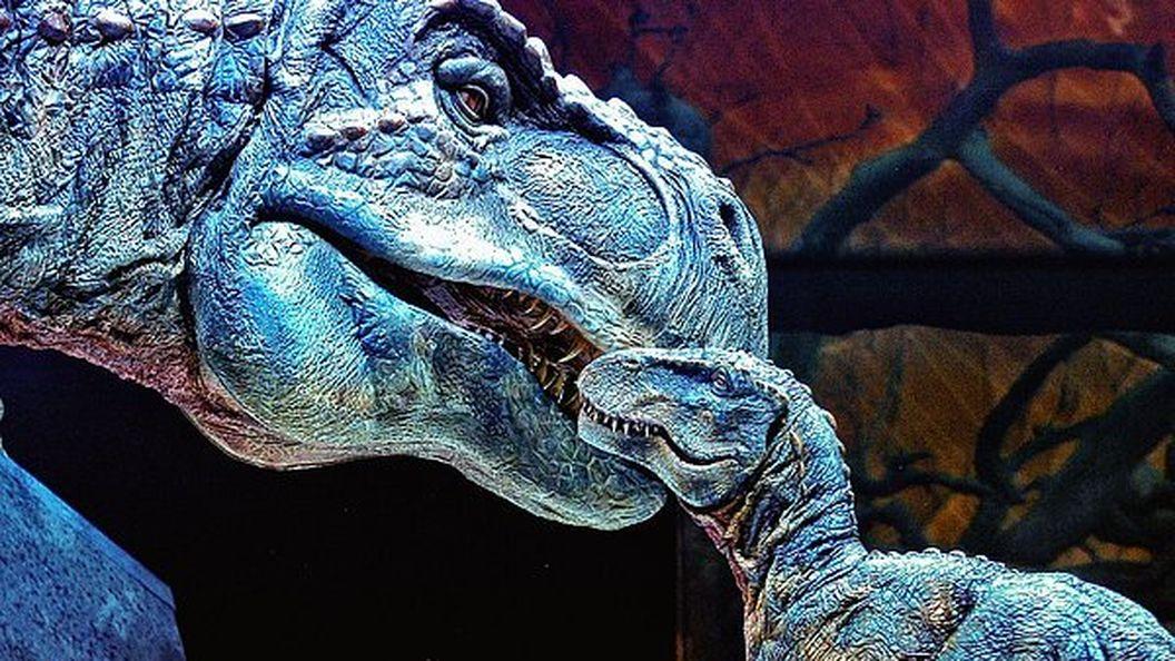 Совершите путешествие в мезозойскую эру с увлекательным тестом из 12 вопросов о динозаврах