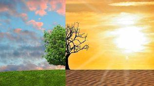 Картинки по запросу Климатический сдвиг на Юг: в мегаполисах резко потеплеет до 2050 года