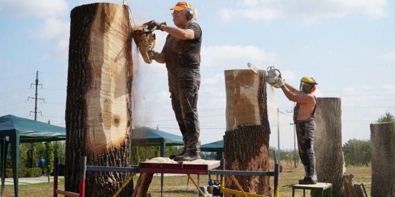 На Виннитчине устроят фестиваль деревянной скульптуры