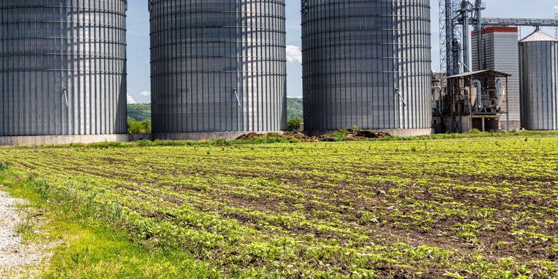В Украине открыли реестр объемов зерна в элеваторах