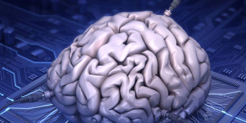 Невероятное открытие: напечатан экспериментальный мозг для исследования коронавируса