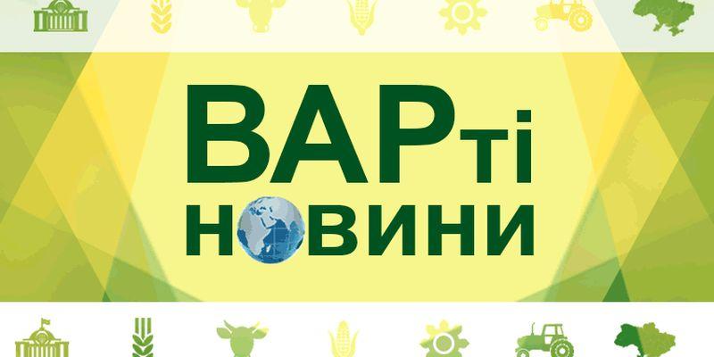 ВАРті новини: Аграрії Одещини опинились перед загрозою повного банкрутства через посуху