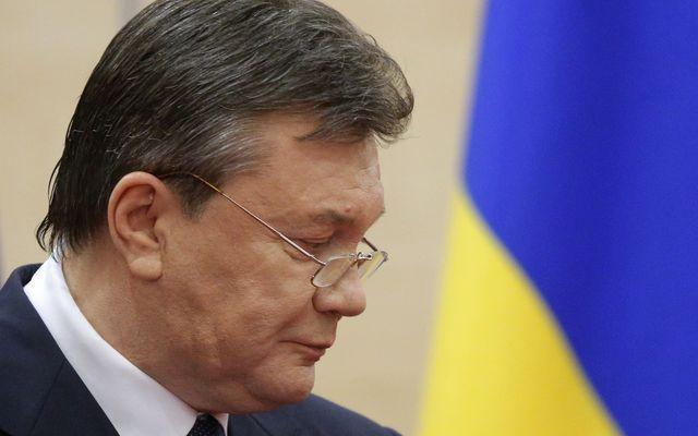 Виктор Янукович - Фото 13