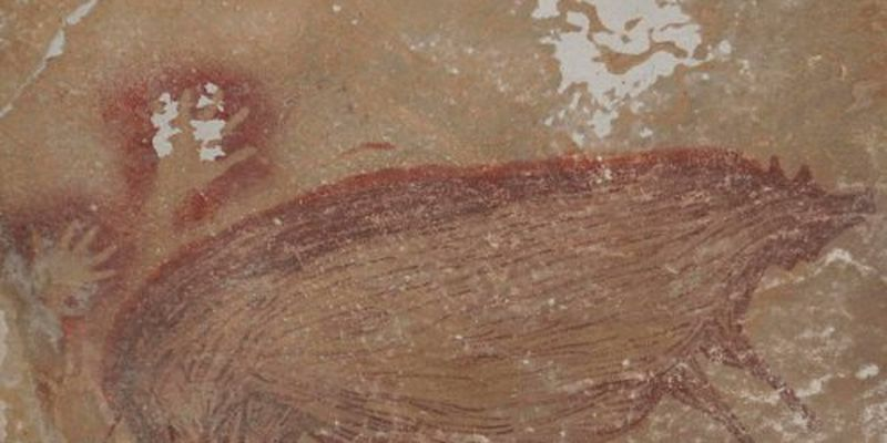 Археологи нашли древнейший рисунок свиньи: ему может быть 45 тысяч лет, фото