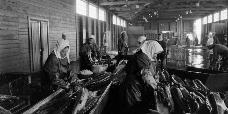 Почему четверг считался в СССР днём рыбы?