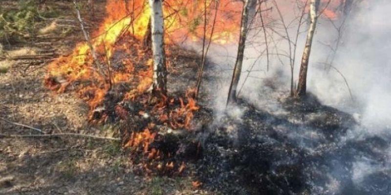 Спасатели предупредили о пожарной опасности в 14 областях Украины