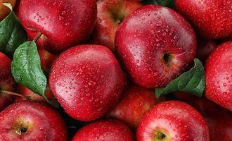 7 продуктов, которые помогут подготовить организм к зиме