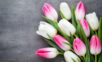 Что подарить на 8 марта: оригинальные идеи подарков